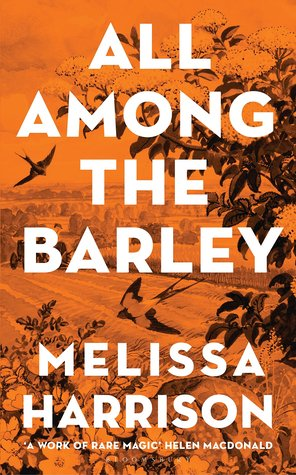 Cover image of All Among the Barley by Melissa Harrison